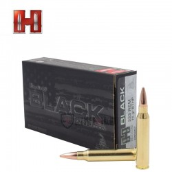 20 MUNITIONS HORNADY BLACK...