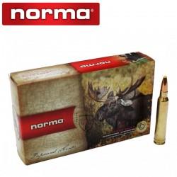 20 Munitions-NORMA-Cal 300 Wm-180Gr-Pointe Plastique