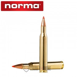 20 Munitions-NORMA-Cal 270 Win-110 gr-V-Max