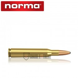 20 Munitions-NORMA-Cal 270 Win-130 Gr-Demi-Blindé