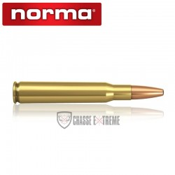 20 Munitions-NORMA-Cal 30-06-200Gr-Oryx