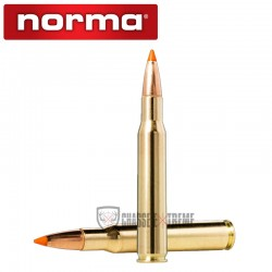 20 Munitions-NORMA-Cal 30-06-170gr-Tipstrike
