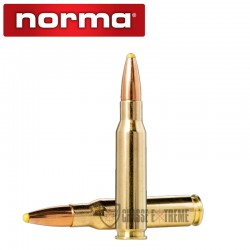 20 MUNITIONS NORMA CAL 308...