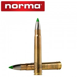 20 Munitions-NORMA-Cal 375 H&H Mag -250gr-Ecostrike