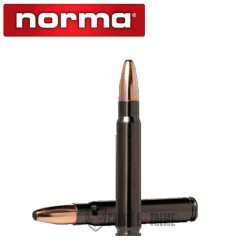 20 Munitions-NORMA-Cal 9.3x62-285gr-Oryx-Silencer