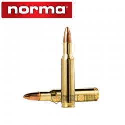 20 MUNITIONS NORMA CAL 222...