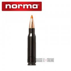 20 Munitions-NORMA-Ctg cal 308 Win 170gr-Tipstrike-Silencer