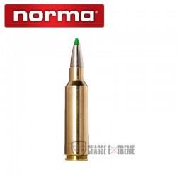 20 Munitions-NORMA-Ctg-cal 300 Wsm-165gr-Ecostrike